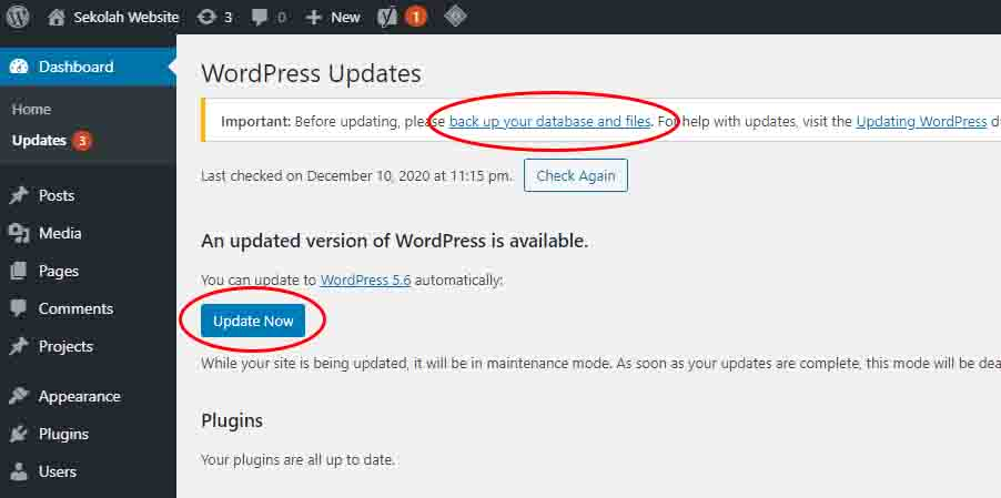 cara update wordpress 5.6